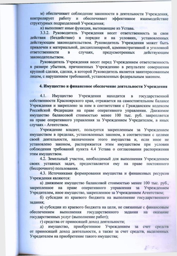 Устав 2016 г - 0009